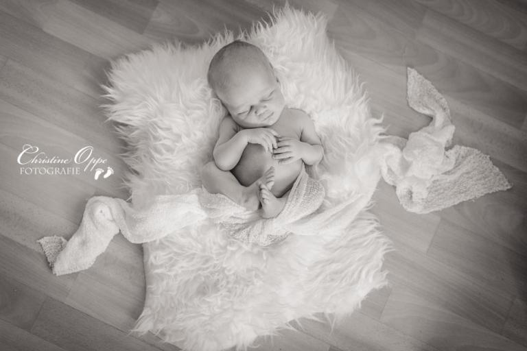 natürliche und professionelle Neugeborenenbilder, Neugeborenenfotos, Babyfotos, Familienbilder in Potsdam, Berlin und Brandenburg, (c) Christine Oppe Fotografie